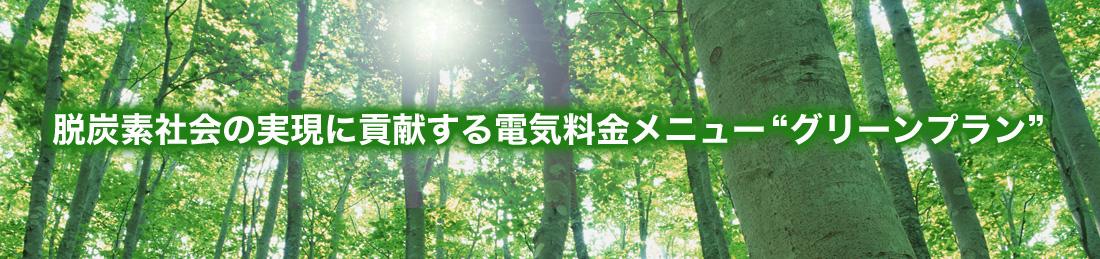 """脱炭素社会の実現に貢献する電気料金メニュー""""グリーンプラン"""""""